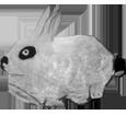 Lapin de garenne adulte - robe 1340000001